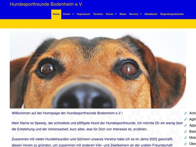 Screenshot von http://www.hsf02.de/